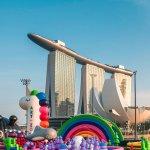 In Search of Singapore's Unicorns