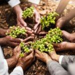 Managing Corporate Social Responsibility in a Downturn